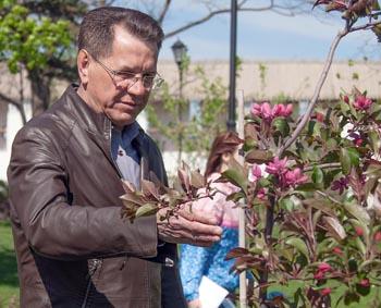 Фото цветов астраханского губернатора Александра Жилкина порадовали пользователей соцсетей