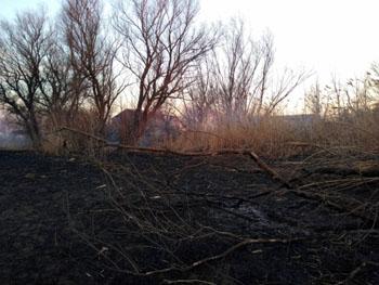 В Астраханской области сгорела база отдыха