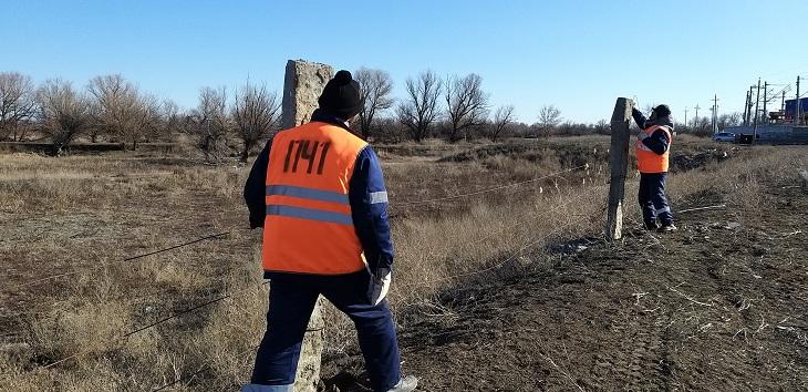 Астраханскую железную дорогу защищают от безнадзорного скота
