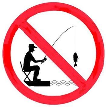 Весеннюю рыбалку в Астрахани хотят запретить