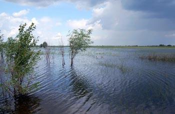 В шести районах Астраханской области ожидается высокий паводок