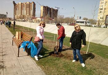 Аллея семьи в Астрахани увеличилась