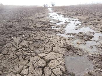Паводок в Астраханской области откладывается