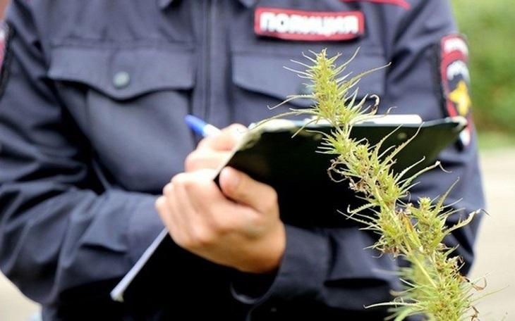 Астраханские полицейские огласили итоги операции «Мак-2020»