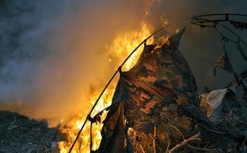 Москвич приехал в Астрахань отдохнуть и сгорел