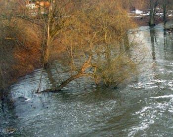 Астраханский паводок затопил дачное товарищество и целую улицу