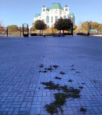 Блеск и нищета Астраханского государственного театра оперы и балета