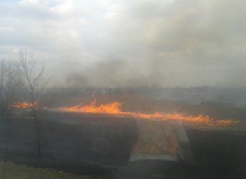 Вдоль трассы Астрахань - Красный Яр бушует пожар: водители попадают в ДТП