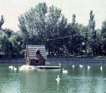 Какой домик будет установлен на Лебедином озере в Астрахани?