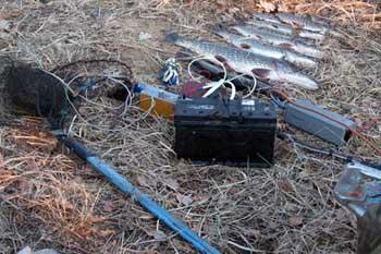 В Астрахани запретили сайт по продаже электроудочек