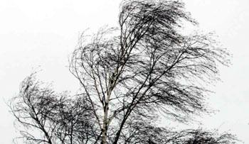 Сегодня в Астрахани усилится ветер