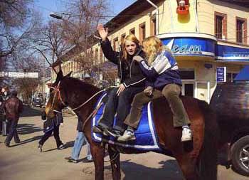 Незаконному катанию на лошадях объявили борьбу