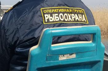 Рыбоохрана в Астрахани продолжает бороться с местными рыбаками