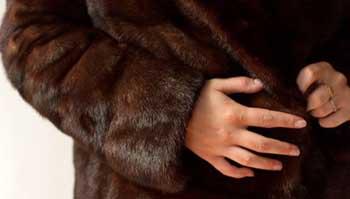 Презент на Новый год - шуба, утащенная из гардероба в ресторане (ВИДЕО)