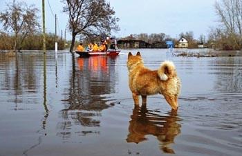 Критическая ситуация с паводком в Астрахани нормализовалась