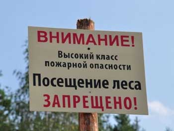 В связи с высокой пожароопасностью в регионе продлено ограничение на пребывание в лесу