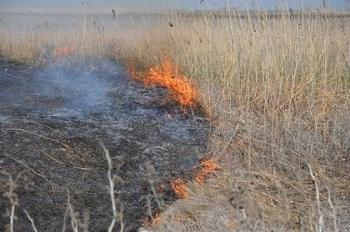 В Астраханской области устроены запланированные пожары