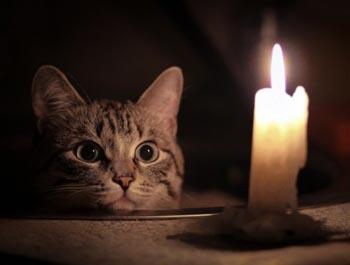 В четверг, 12 апреля во всех районах Астрахани выключат свет