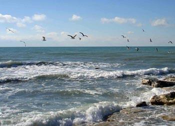 Все подробности конвенции о правовом статусе Каспийского моря