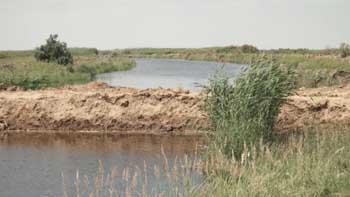 В одном из охотхозяйств Наримановского района обнаружили дамбу, которая отделила канал от основного водотока