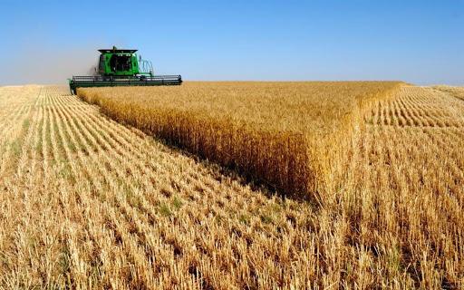 В Астрахани продаётся 47 тысяч гектаров земли за 285 млн рублей