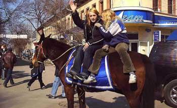 Власти Астрахани никак не найдут управу на лошадей