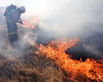 В Астраханской области объявлена чрезвычайная пожароопасность
