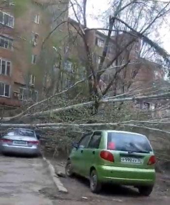 Ветер в Астрахани повалил деревья