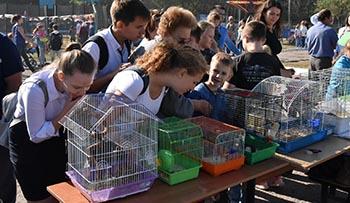 Трусовский район продолжает праздничную программу Дня города