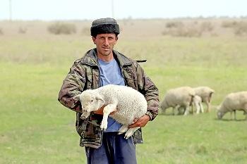 За деньги налогоплательщиков Астрахани облминсельхоз чествовал дагестанцев