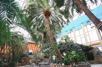 Астраханский Зимний сад оживет