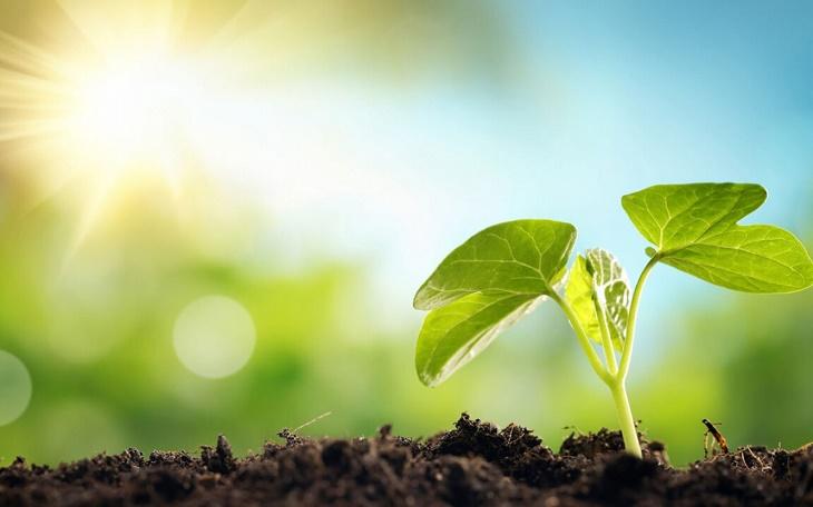 Астраханская область «подросла» в экологическом рейтинге регионов