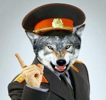 «Оборотень в погонах» из полиции Астрахани пошёл под суд