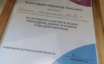 #АстраханьЖиви получило благодарственное письмо от губернатора и приняло в свои ряды сенатора А. Башкина