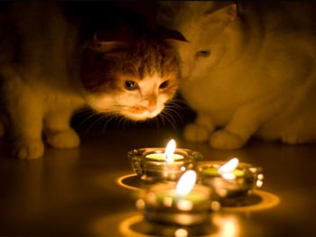 Сегодня, 4 мая в Астрахани и области отключат свет. Список адресов