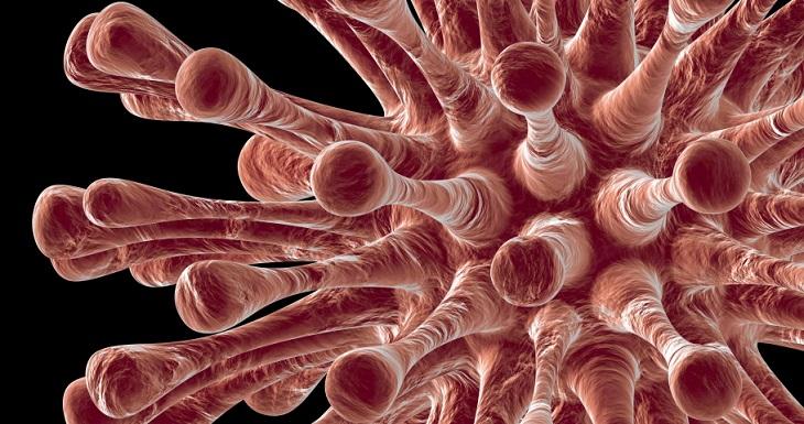 За сутки COVID-19 заболело ещё 25 астраханцев