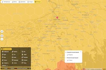 В Сети появилась онлайн-карта пыльцы для астраханских аллергиков