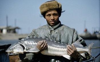 «Чёрное золото»: Американский фотограф запечатлел добычу икры в Астрахани в 1960-х