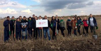 В Приволжском районе посадили 1,5 га леса