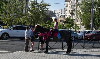 Катание на лошадях опасно и незаконно