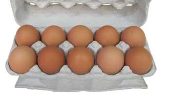 Опасные яйца оказались не астраханскими