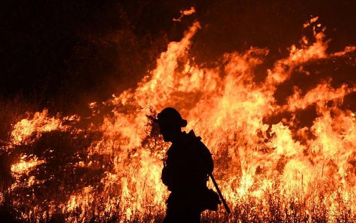 В выходные в Астраханской области горела дельта Волги
