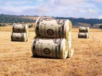 Астраханская область выступает за льготы аграриям в банковском секторе при расчете по просроченным займам