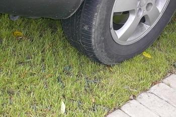 Парковка на газоне под запретом