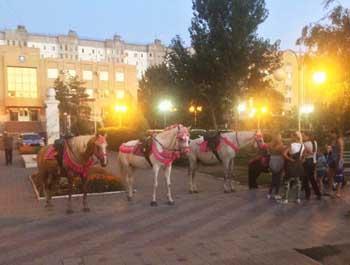 Лошади на детских площадках. Обычное для Астрахани дело