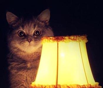 Завтра в Астрахани отключат электричество на десятках улиц