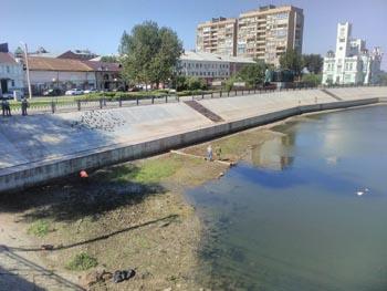 Фестиваль «Каналия» пройдёт на болоте