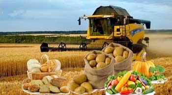 В Астрахани выявлено более 250 нарушений в сельскохозяйственной сфере