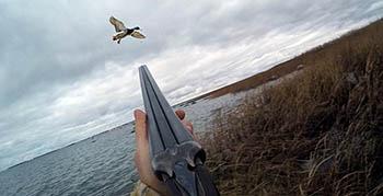 В Астраханской области начинается сезон охоты. Важная информация для охотников!