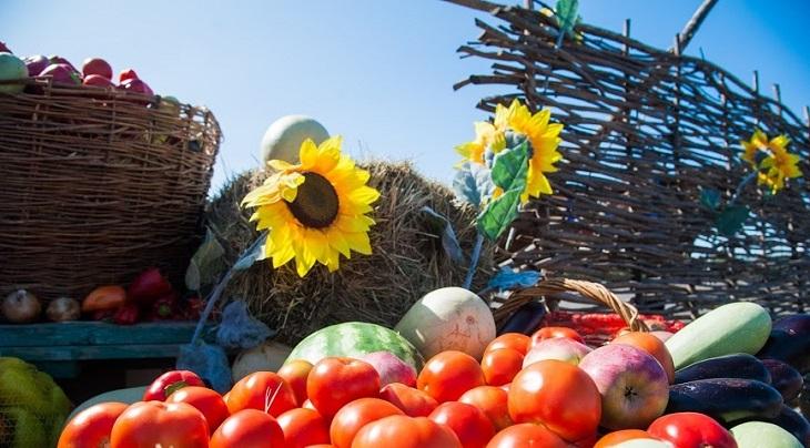 В Астраханской области активно идёт сбор осеннего урожая